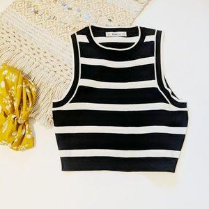 Zara Knit Sleeveless Striped Crop Top